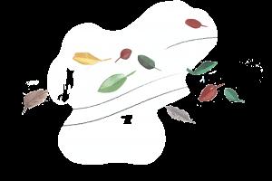 Veter in listje